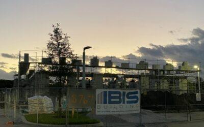 November Ibis News